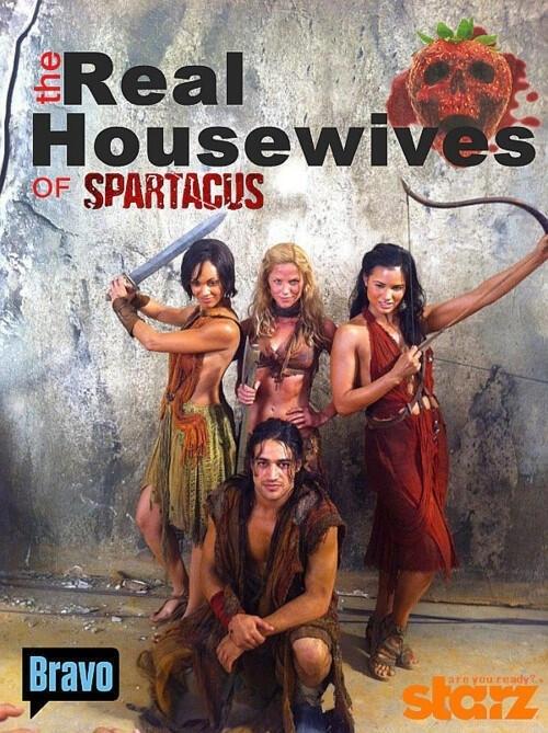 spartacus season 1 subtitles software