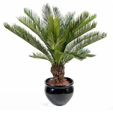palmier cycas artificiel