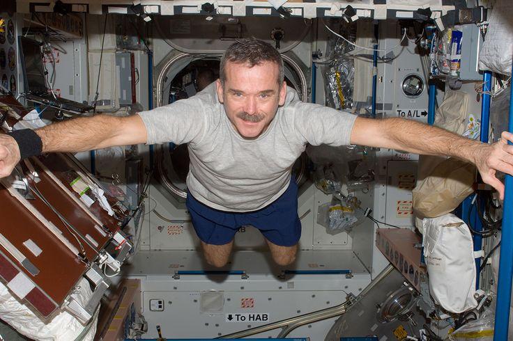 Chris Hadfield, el célebre astronauta canadiense que, hace unos años, estuvo en la Estación Espacial Internacional, ha hablado con New Scientist sobre el ambicioso objetivo de la NASA de viajar a Marte. Lo tiene claro, cree que primero deberíamos ir a la Luna. #astronomia #ciencia