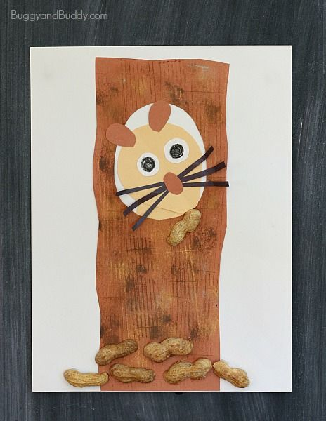 Children's Craft Based on the Story, Nuts to You! by Lois Ehlert~BuggyandBuddy.com
