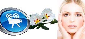 La ciste Ladanifère, une huile essentielle prodigieuse pour la peau