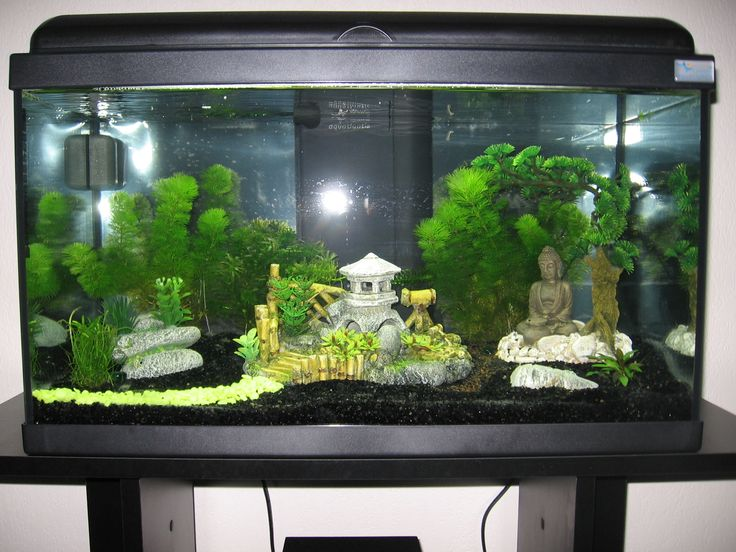 Decoration Zen Aquarium : Aquarium avec décoration asiatique zen