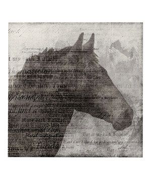 Love this Gray Equestrian Canvas by Evergreen on #zulily! #zulilyfinds