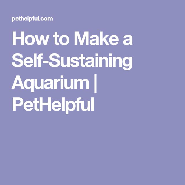 how to make a self sustaining website