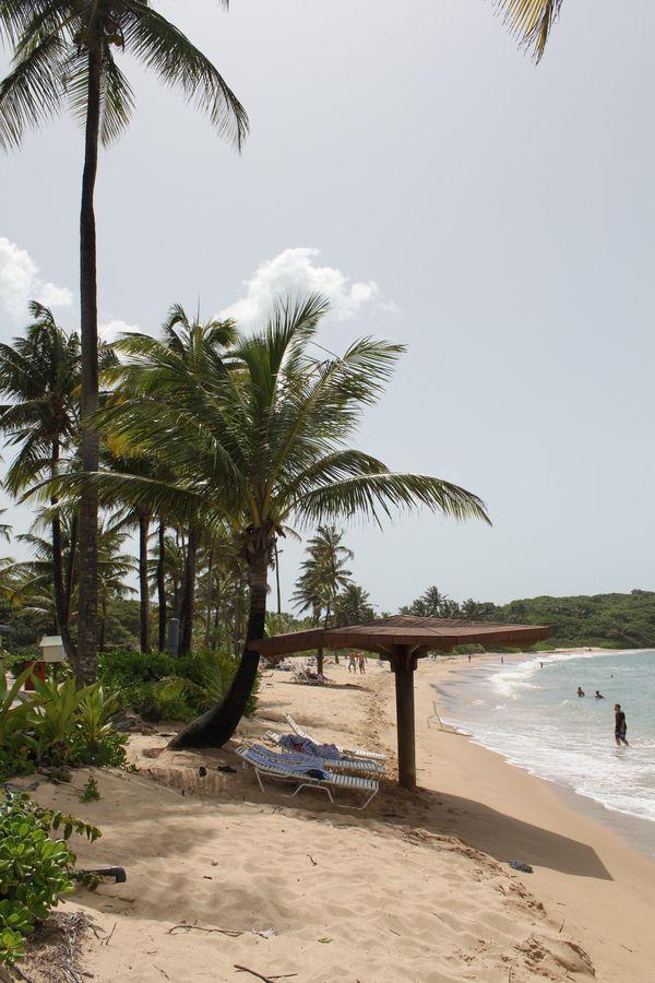 Beach - Dorado, Puerto Rico