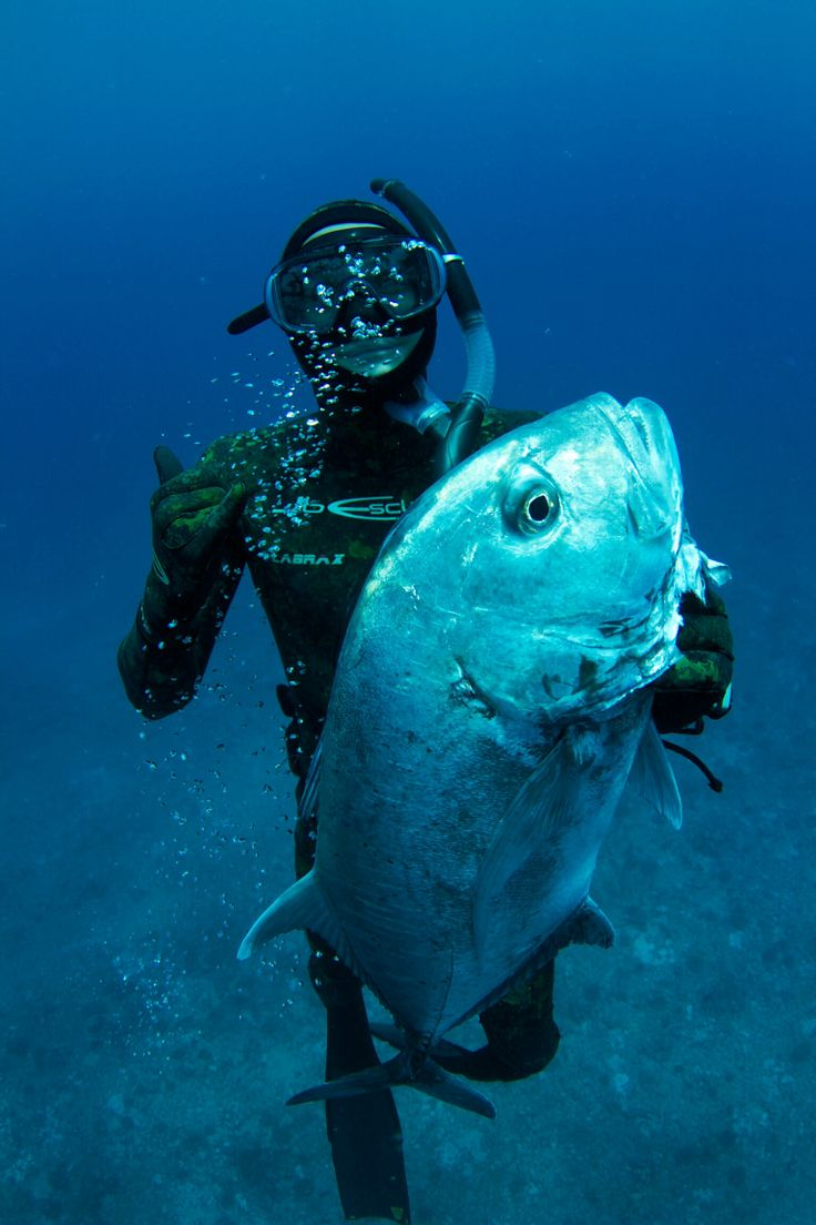 268 best images about ulua hawaii fishing on pinterest