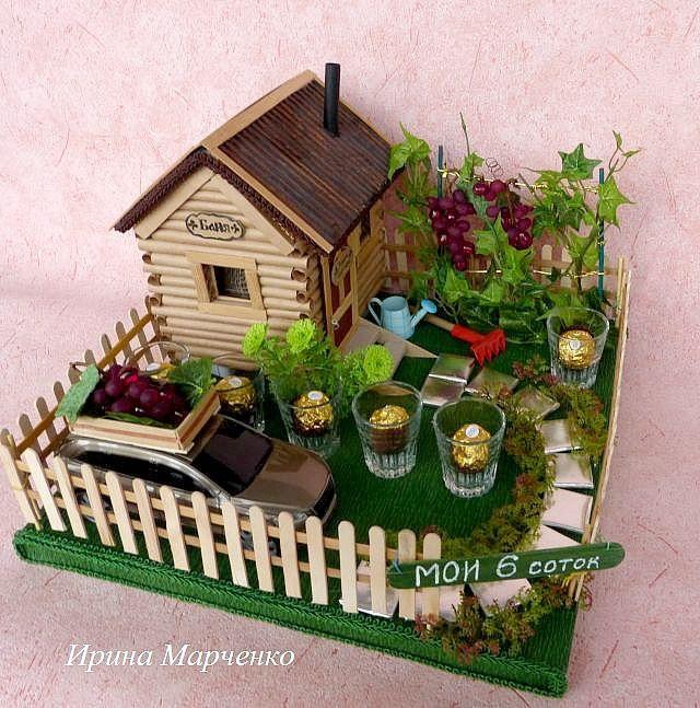 Хвойные для дома и квартиры в горшках! Виды и сорта