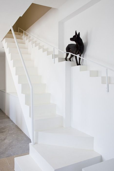 House renovation in Ho Chi Min City by architecture firm 07Beach. This home features a staircase exclusively for canine traffic that straddles the main stairs.