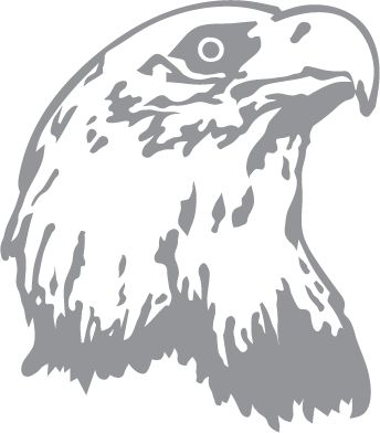 Glass etching stencil of Eagle Profile. In category: Birds of Prey