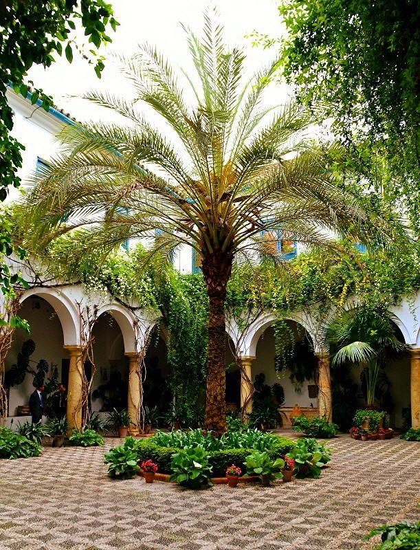 Córdoba: el jardín encantado en el patio.