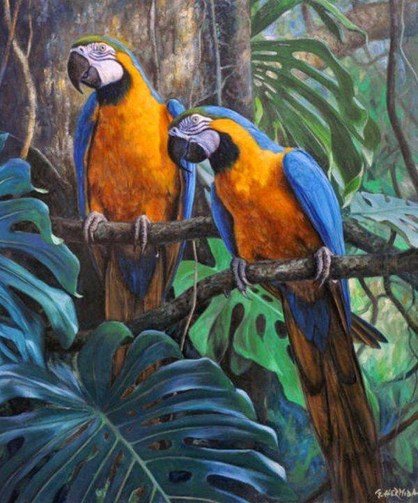 Pinturas Cuadros al Óleo: Aves exóticas pintadas en óleo sobre lienzo