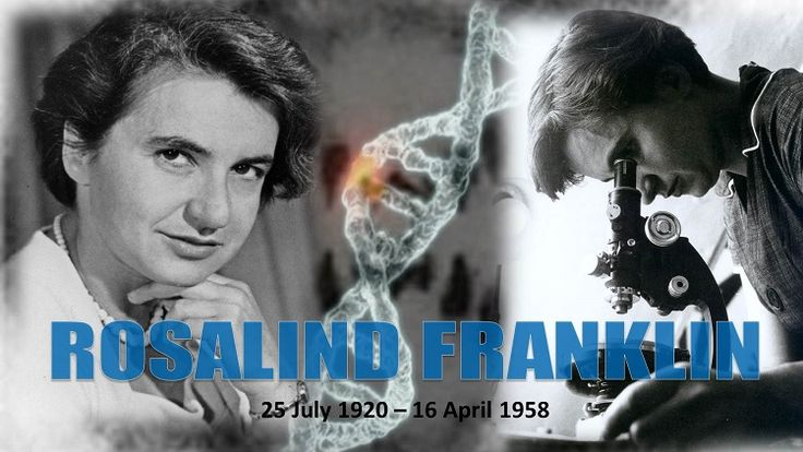 Today we honor #RosalindFranklin on her birthday. Dr. Franklin's work in x-ray crystallography was instrumental in the elucidation of the double-helical structure of #DNA. She was only 37-years old when she died but her contributions to science will forever be told. #biophiles #biology #biochemistry #genetics #watsoncrick