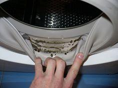 Ты вдруг стала замечать, что после стирки вещи приобретают неприятный запах, а на уплотнительных резинках стиральной машинки или в лоточках для порошка появились черные пятна? Знай — эточерная плесе…