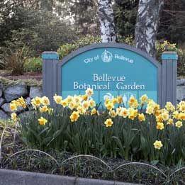 Bellevue Botanical Garden- Hours:Dawn to dusk  Admission:Free