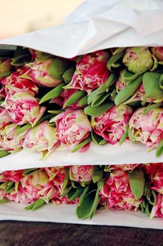 ...: Favourite Flowers, Parrot Tulips, Flower Beautiful Flowers, Flower The Tulip, Flowers Plants, Flower Shoppe, Fresh Flowers, Beautiful Tulips