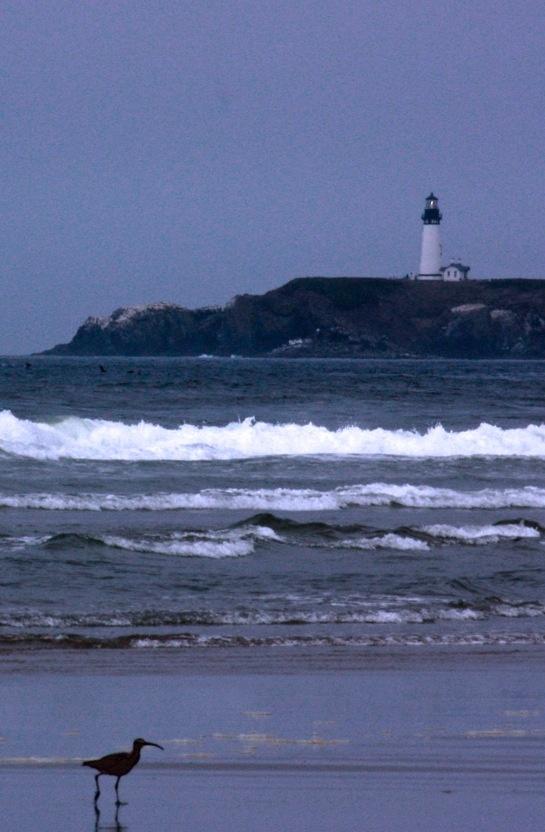 Beach & lighthouse, Newport, Or