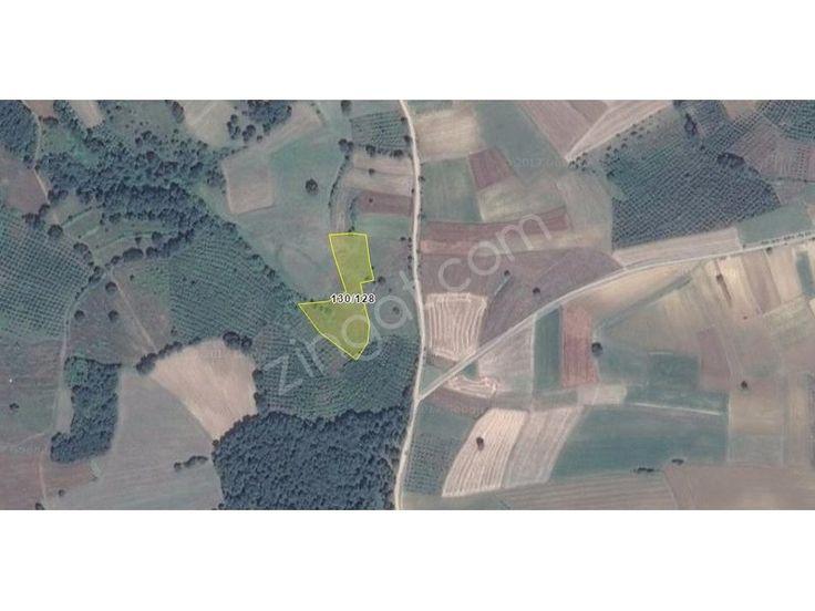 Kocaeli Kandıra da Sinanlı Bilallı da 5,075m2 Arsa 170000 TL - Zingat