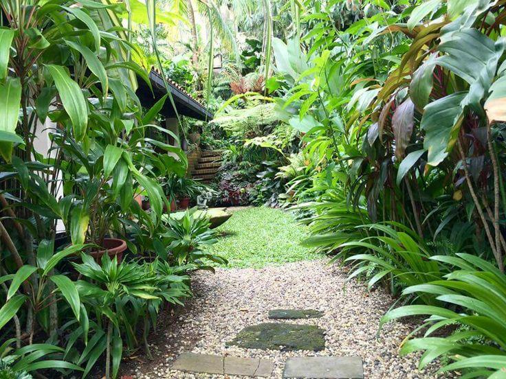 463 mejores imágenes de tropical gardens en pinterest | jardines