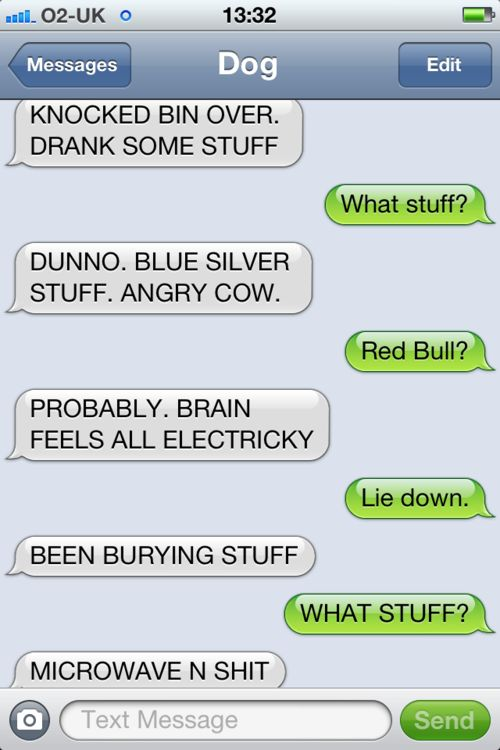 Best Dogs Texts Images On Pinterest Funny Sayings Cats And Dogs - Dogs able text 30 hilarious texts dogs
