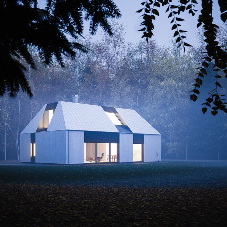 Rune designed the tind house as a prefab kit house that falls in line with modern scandinavian single family houses featuring a single pitch roof