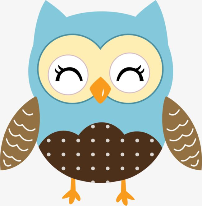 Blue Owl Bi Yanjing Coruja Desenho Corujas Fofas