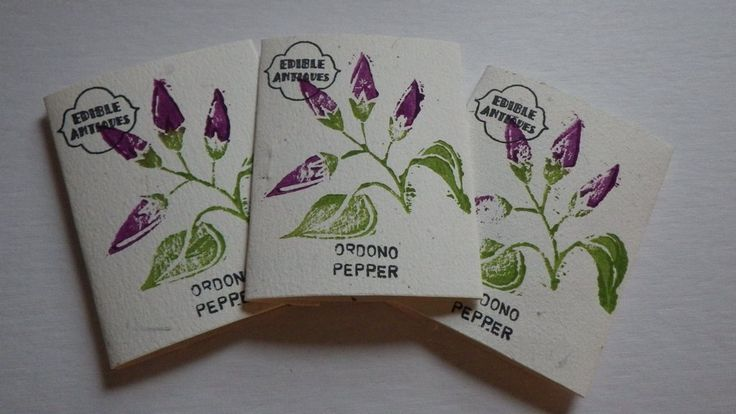 """Ordono"" Pepper Seeds"