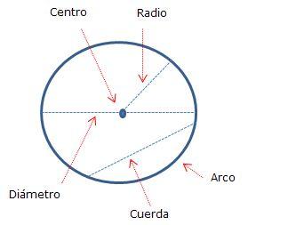 Resultado de imagen para partes de la circunferencia de un circulo