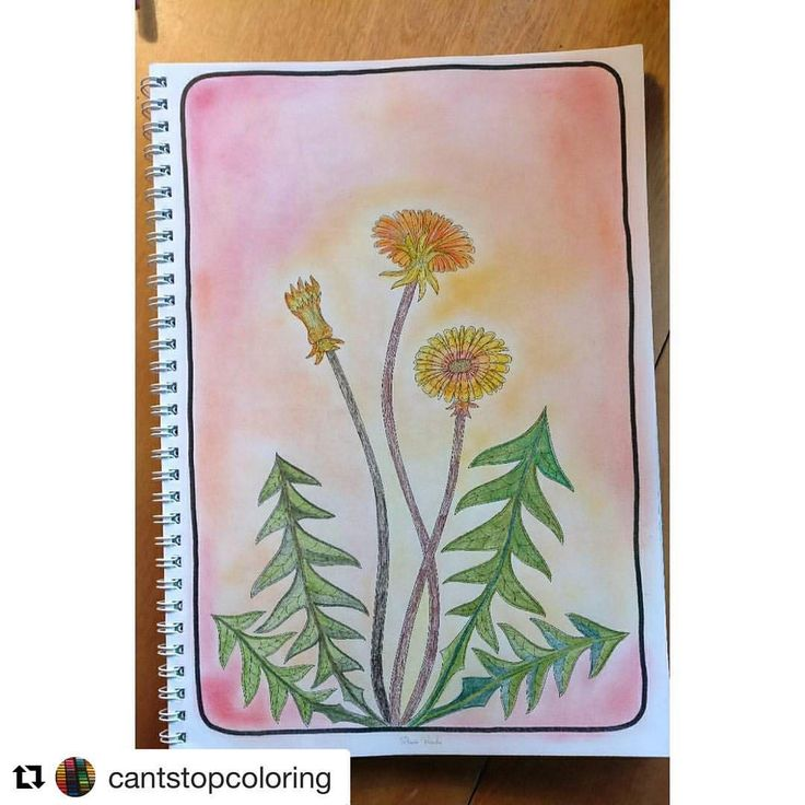 """Mental Images Coloring Books (@paivivesala_art) on Instagram: """"This sunny and delicate coloring makes me feel that summer is coming. Yes it is, day by day it is…"""""""
