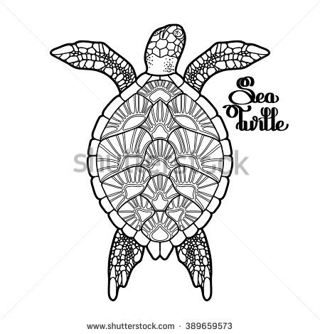 Graphic Hawksbill sea turtle drawn in line art style. Ocean vector creature isolated on white background. Top view. Coloring book page design for adults and kids - stock vector