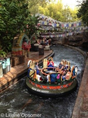 Animal Kingdom Theme Park Rides