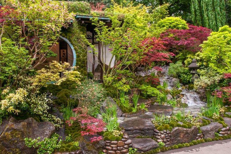 Japanse tuin met Japanse esdoorns, een beekje, veel mossen en een ...