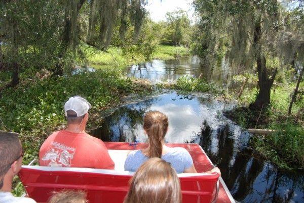 Florida Gator Tours Sarasota