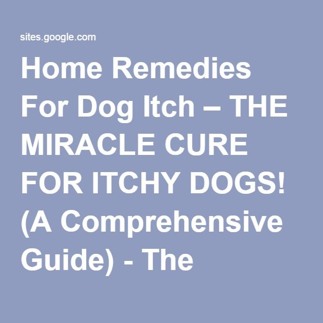 1000+ Ideas About Dog Itching On Pinterest