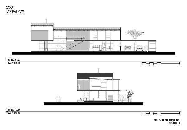 Casa las Palmas - Carlos Molina