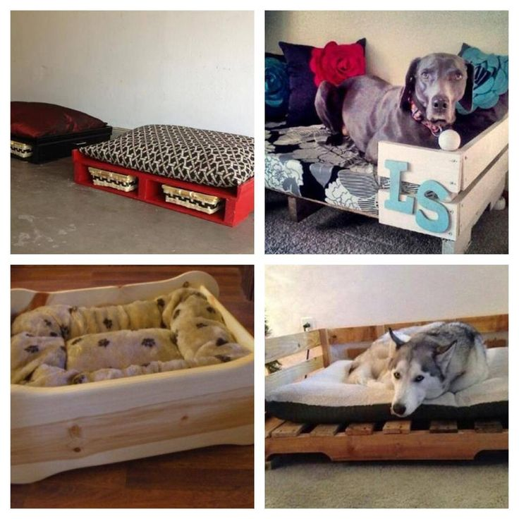 Pallet Bed For Dogs Cats