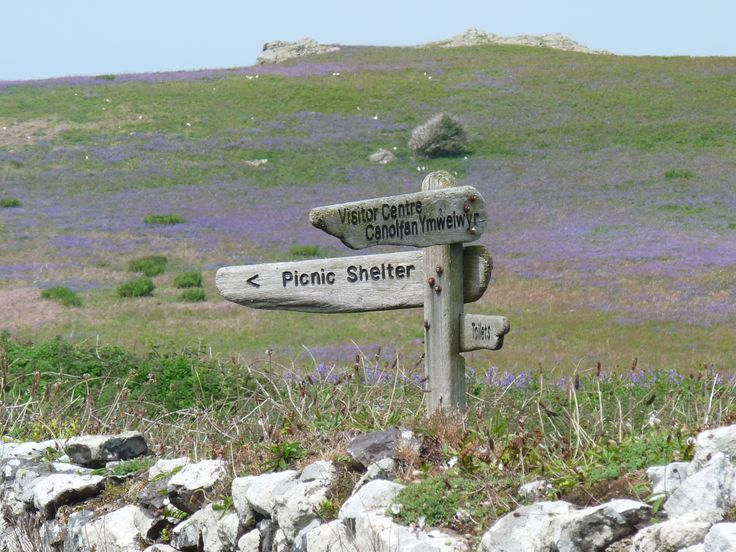 Signpost at the Old Farm information centre where you can also stay in simple accommodation if you get in early enough to book it!