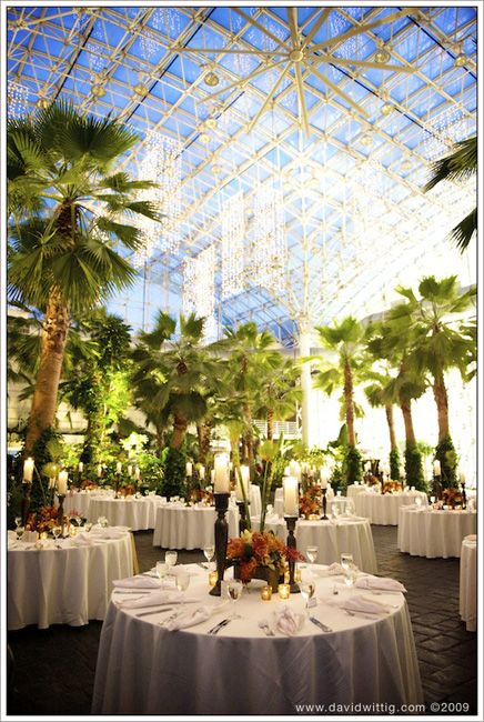 Tropical Wedding In The City D Crystal Gardens Navy Pier