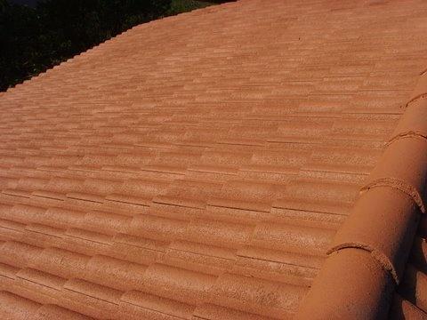 Peinture et demoussage d'une toiture, à Chambery (n4)