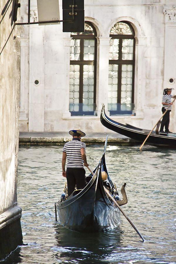 Venezia - La gatta col piatto che scotta