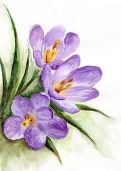 Download Watercolor Spring Flowers Stock Illustration