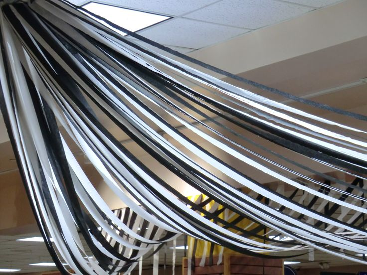 When all else fails, black & white streamers are inexpensive, easy and effective.
