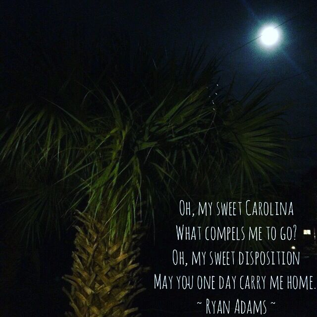 Oh, My Sweet Carolina - Ryan Adams - photo from Folly Beach, SC