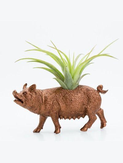 Bronzen varken - Hit op Etsy: beestachtige bloempotten | ELLE Decoration NL