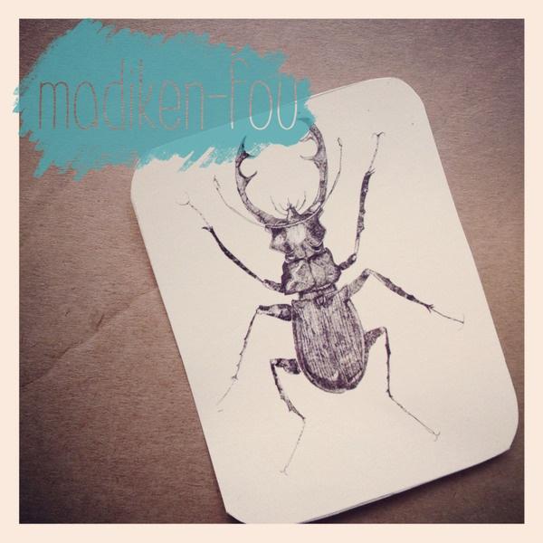 Prints eines selbst illustrierten Käfers. Als kleine Bedank-Mich-Karte oder als Anhänger an einem Genschenk. Die Illustration ist ausgesprochen Detail