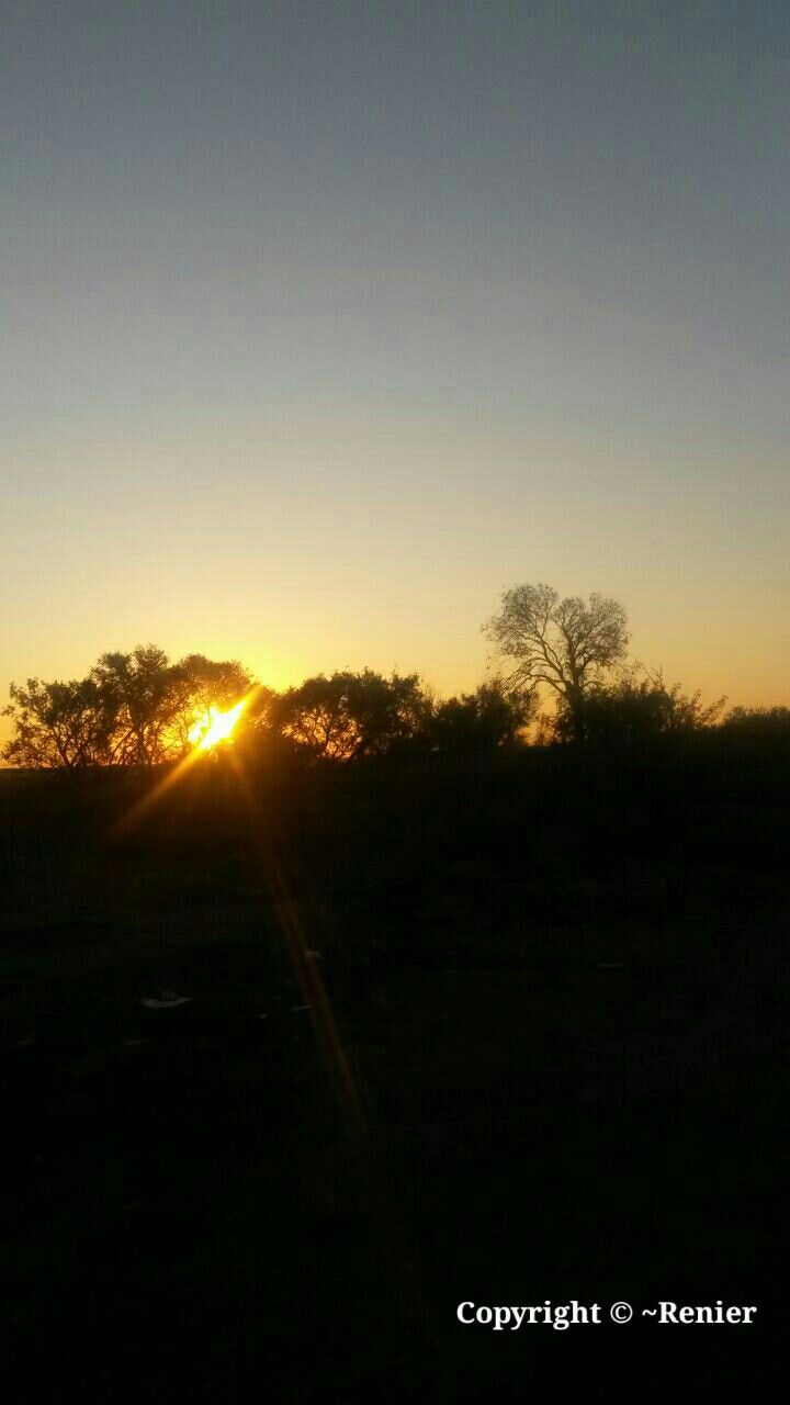 Beautiful Sunset.... captured by Renier Botha..... on farm outside Koppies