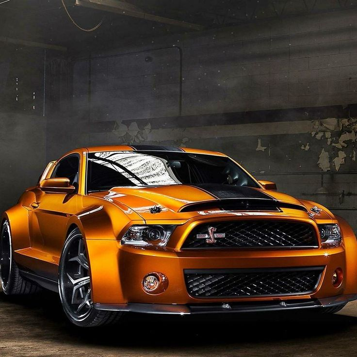 Best Shelby Images On Pinterest Luxury Cars And Entertainment - Meet craziest man world mustang wanted