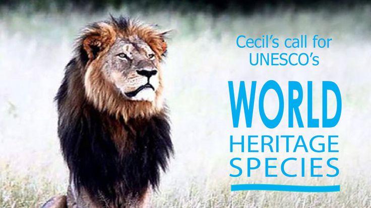 "Petition · UN Secretary-General Ban Ki-Moon (New York) and UNESCO Director-General Irina Bokova (Paris): A call to UN/UNESCO to establish ""World Heritage Species"" program · Change.org"