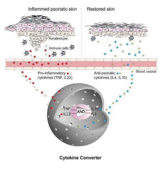 Todos Somos Uno: Reprograman células para curar enfermedades al instante