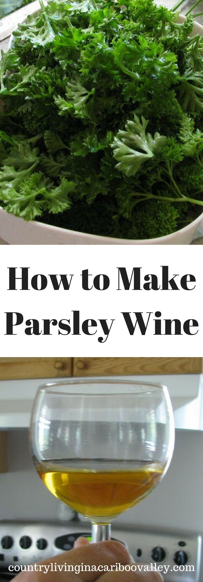Delicious! Homemade Parsley Wine is one of the best of our bunch! Make your own wine at home.