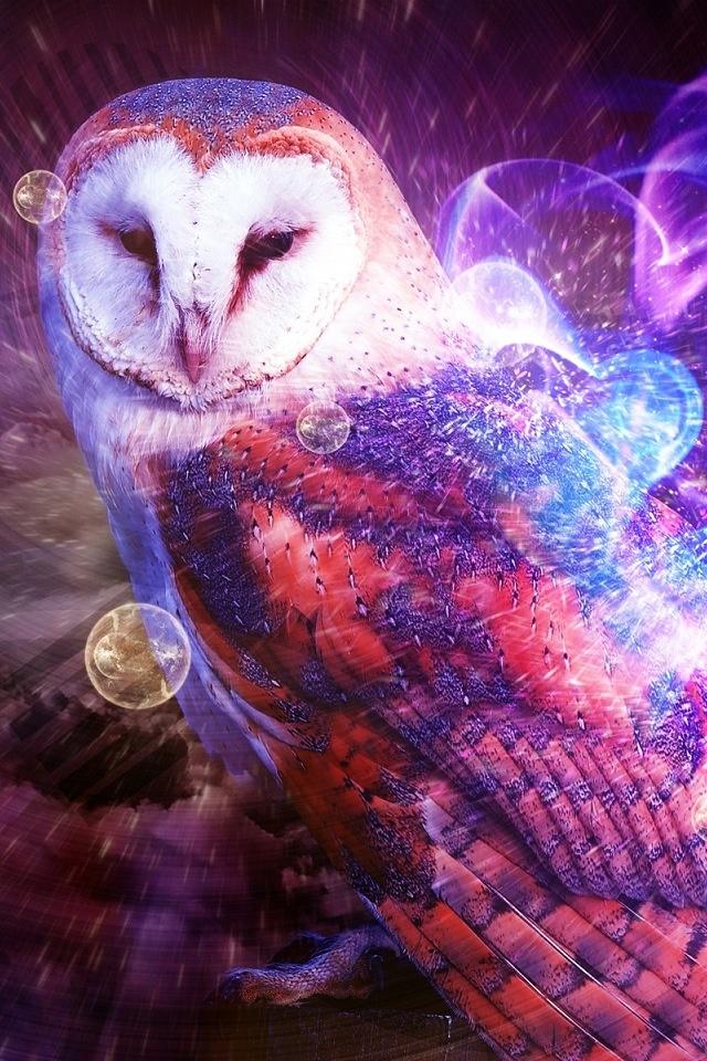 Koleksi Owl Art Wallpaper Iphone | wallpaper alam